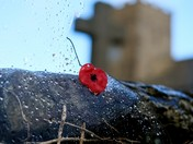 Remembrance Sunday - Welcombe