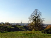 Mousehold Heath