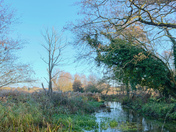 A crisp Autumnal morning along the river Nar at Castle Acre.