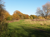 Autumn in Harrow Lodge Park