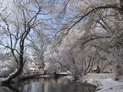 A Norfolk Winter photo as requested by the EDP