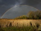 rainbow and bideford