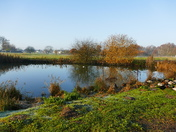 Hempton Pond