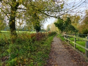 PATH TO THE RIVER,  HALL STAITHE