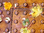 Photo Challenge - Autumn Still Life