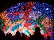 Tunnel of lights #Norwich