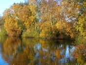 AUTUMN AT PENSTHORPE