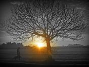 Frosty Morning - Hindolveston