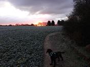 Sunrise , old Catton