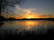 Time sent fishing near Harleston is never waste