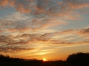 New Years Day sunrise.(HAPPY NEW YEAR TO ALL.)