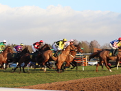 New Years Day Racing at Fakenham