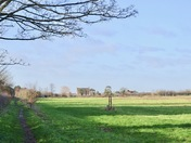 Winter sunshine on the green belt of Redbridge