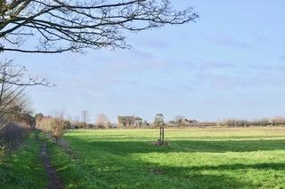 Winter sunshine on the green belt of Redbridge