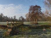 Needham Marsh