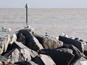 High tide Cobabolds Point Felixstowe