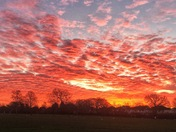 Sunrise over Hylands Park, Hornchurch