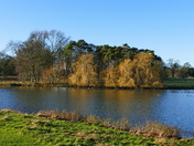 SUNNY WINTERS DAY AT HOLKHAM LAKE