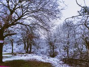 Harold hill turns into a sniwy winter wonderland
