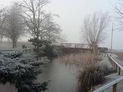 Frosty, foggy morning in Nicholas Everitt Park