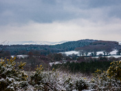 A wintery Woodbury common