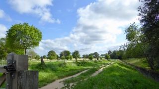 Project 52 - Week 8 - Norfolk Paths