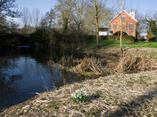 Weekly Challenge - Landscapes Layham water mill in the winter sunshine