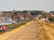 Project 52 week 8: Norfolk paths