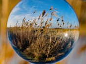 landscape in a ball