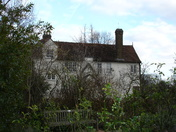 Spring beginning to show signs of arrival at Valence House Museum