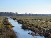 Norfolk & Suffolk Landscape & Nature - February 2019