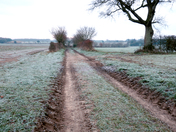 Project 52. Footpath north of Southrepps village.