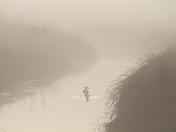 Misty Morning on Halvergate Marshes