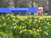 PHOTO CHALLENGE: Signs of Spring