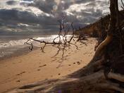 Benacre beach.