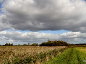 Beautiful Suffolk