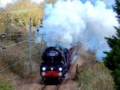 Nigel Dobbing memorial train