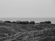Fishermans Huts, winterton