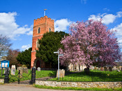 Spring Blossom at Layham church
