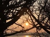 Sunset glimpse