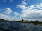 Lackford Skyline