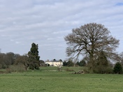 Catton park