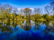 Beautiful blue skies making stunning reflections on the ponds