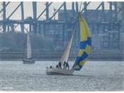 Sails aplenty on the River Orwell.