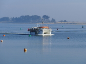 COMING INTO WELLS ON A SUNNY MORNING
