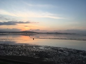 Serenity at Sunset on the Exe