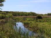 Church Marsh