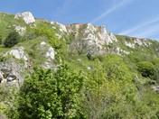 Haven Cliffs