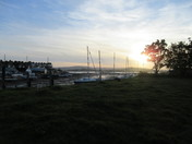 Evening sun from Camperdown Terrace