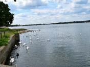 The Stour at Mistley